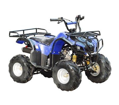 ATA-110D-TaoTao-Kids-Gas-110cc-Utility-ATV-0