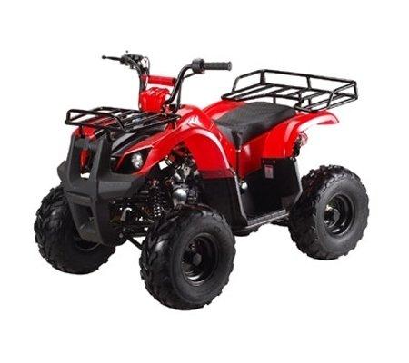 ATA-125D-TaoTao-Kids-Gas-125cc-Utility-ATV-0