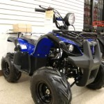 Atv-125cc-Fully-Automatic-with-Reverse-1-Year-Engine-Warranty-0-1