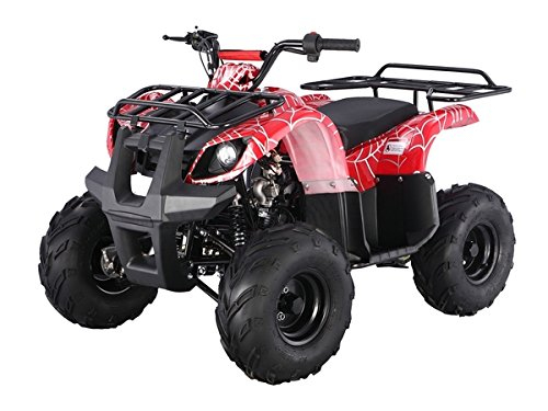 Atv-125cc-Fully-Automatic-with-Reverse-1-Year-Engine-Warranty-0