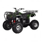 Full-Size-Atv-125cc-Semi-Auto-with-Reverse-Ata-125f1-Model-0-0