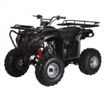 Full-Size-Atv-125cc-Semi-Auto-with-Reverse-Ata-125f1-Model-0