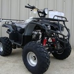 Full-Size-Atv-250cc-4-Gears-with-Reverse-0-1