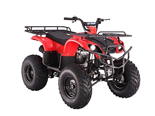 Full-Size-Atv-250cc-4-Gears-with-Reverse-0